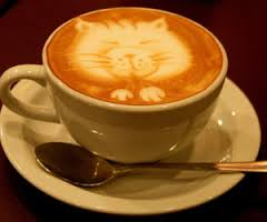coffee with cat image
